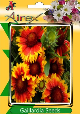 Airex blanket Seed(25 per packet)  available at flipkart for Rs.119