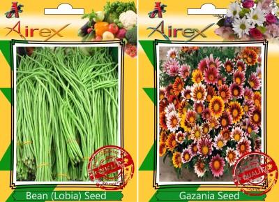 https://rukminim1.flixcart.com/image/400/400/plant-seed/x/s/h/airex-15-bean-lobia-and-gazania-seed-15-seeds-per-packet-original-imaepz9egufwspzc.jpeg?q=90