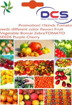 https://rukminim1.flixcart.com/image/400/400/plant-seed/z/d/f/dcs-30-079-30pcs-11kinds-tomato-seeds-different-color-flavors-original-imaep8hqkvnntcfp.jpeg?q=90