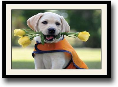 https://rukminim1.flixcart.com/image/400/400/poster/5/h/w/dog-with-yellow-roses-asf1230-medium-original-imaedyjm7s6b4rqn.jpeg?q=90
