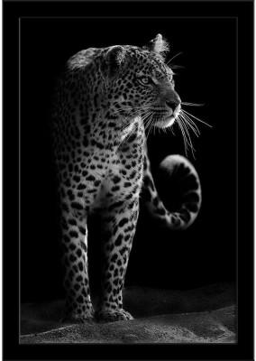https://rukminim1.flixcart.com/image/400/400/poster/6/v/j/leopard-framed-art-print-azpri20857884fpo-l-01-bf-r-small-original-imaensutzzdvyv5b.jpeg?q=90