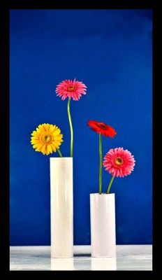 Flowers in Canvas Art(48 inch X 28 inch)