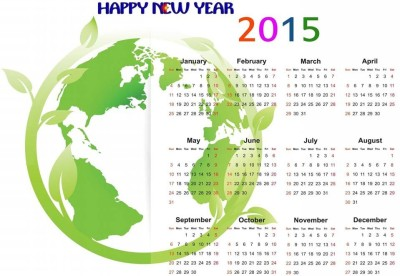 RadhaKripa one direction 2015 Poster Paper Print(18 inch X 12 inch, Rolled)