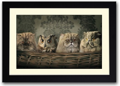Cat and Owls In Basket Fine Art Print(14 inch X 20 inch, Framed)