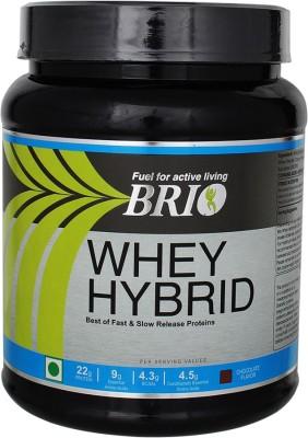 Brio Whey Hybrid (500gm / 1.11lbs, Chocolate)
