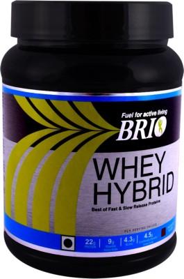 Brio Whey Hybrid (500gm / 1.11lbs, Vanilla)