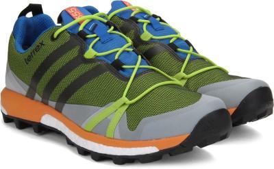 Adidas TERREX AGRAVIC GTX Outdoor Shoes(Black, Blue, Green) at flipkart