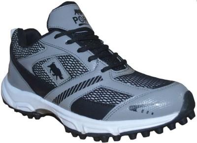 Port Cricket Shoes For Men(Grey)