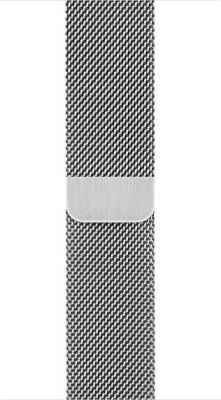 Apple MJ5F2ZM/A Smart Watch Strap(Silver) 1
