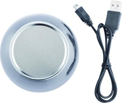 Loooqs-Stainless-Steel-Bluetooth-Speaker