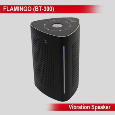 Persang Karaoke Flamingo Portable Bluetooth Laptop/Desktop Speaker(Black, 2.1 Channel) at flipkart