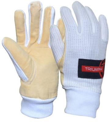 https://rukminim1.flixcart.com/image/400/400/sport-glove/f/r/y/ig-600-left-right-na-triumph-na-inner-gloves-wicket-keeper-free-original-imae7kfyyqkq3twa.jpeg?q=90