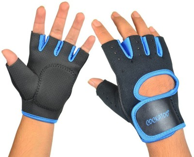 https://rukminim1.flixcart.com/image/400/400/sport-glove/p/m/f/6951376103854-left-right-60-cockatoo-7-gym-fitness-gloves-pro-original-imae8uhfugpg3jrn.jpeg?q=90