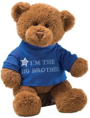 Enesco Gund Tshirt Message Teddy Bear Animal Brown Enesco Soft Toys