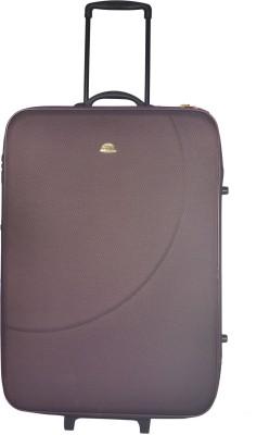 Genex Canon Deluxe Cabin Luggage   20 inch Purple