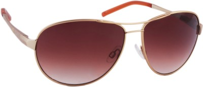 Joe Black Aviator Sunglasses(Brown