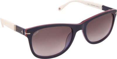 Tommy Hilfiger TH 7948 Nav/Wht C3 57 S Wayfarer Sunglasses(Brown) at flipkart