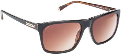 Tommy Hilfiger Wayfarer Sunglasses(Brown) at flipkart
