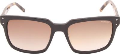 Tommy Hilfiger TH 7845 C3 55 S Wayfarer Sunglasses(Brown) at flipkart