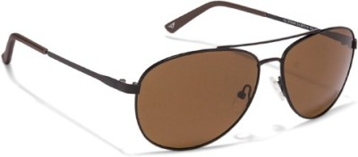 bdf422dec8 Vincent Chase VC S10029 Top guns Black Brown C4 Aviator Sunglasses Aviator  Sunglasses ( Brown )
