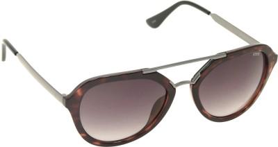 IDEE Aviator Sunglasses(Black)
