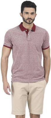 Basics Solid Men's Polo Neck Maroon T-Shirt at flipkart
