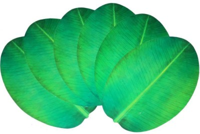 E-Retailer Oval Pack of 6 Table Placemat(Green, PVC) at flipkart