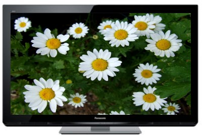 Panasonic VIERA 50 Inches Full HD Plasma TH-P50U30D Television(TH-P50U30D) 1
