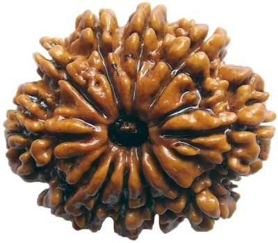 ByCue Ceritfied 11 Mukhi Nepal Rudraksha 27.03mm Wooden Yantra(Pack of 1) at flipkart