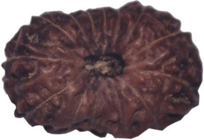 Navkaar Creation 14 Mukhi Rudraksha Java 18.85mm Wooden Yantra at flipkart