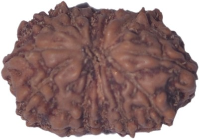 Navkaar Creation 14 Mukhi Rudraksha Java 15.50mm Wooden Yantra at flipkart