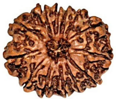 ByCue Certified Natural 13 Mukhi Rudraksha Nepal 24mm Wooden Yantra(Pack of 1) at flipkart
