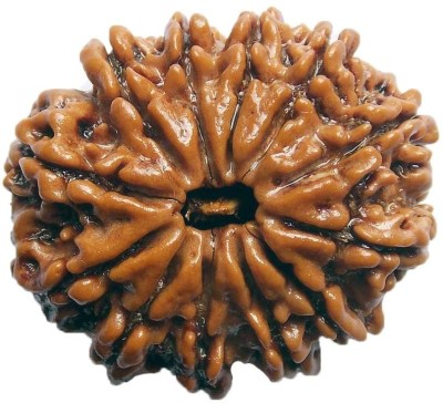 ByCue Ceritfied 12 Mukhi Nepal Rudraksha 26.57mm Wooden Yantra(Pack of 1) at flipkart