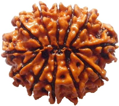 ByCue Certified 12 Mukhi Rudraksha Wooden Yantra(Pack of 1) at flipkart