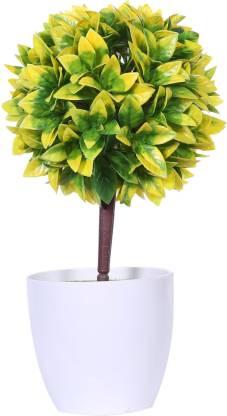 Evergreen Bonsai Artificial Plant  with Pot