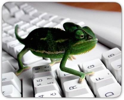Digiclan Tiny Lizard On Keyboard Mousepad Mousepad
