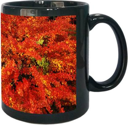 Arkist autumn in poznan poland Ceramic Coffee Mug