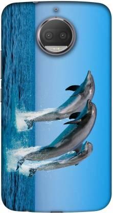 Casotec Back Cover for Motorola Moto G5s Plus