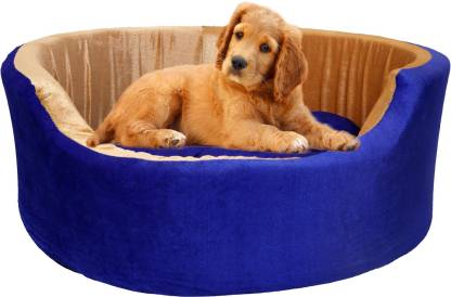 Amit Brothers AB12 S Pet Bed  (Blue)