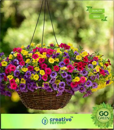 creative farmer Petunia Hanging Mix Seed