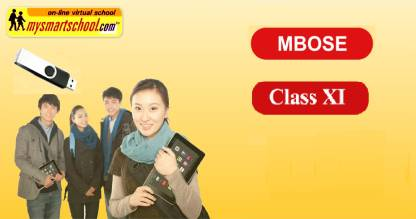 mysmartschool Class-XI-MBOSE_Syllabii-USB Pendrive_Course-Ver2.0 English,Mathematics,Physics,Chemistry,Biology ,History ,Comp.Sc,Health , Hindi ,Geography,Economics And Pol.Science &EVS (13 Subjects).with FUN ,Songs & Plenty of FUNSHEETS.All/each Lessons are Interactive Multimedia/Video Lessons with multiple Questions on the Basis of MBOSE Evaluation