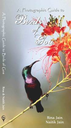 Guide to Birds in Goa