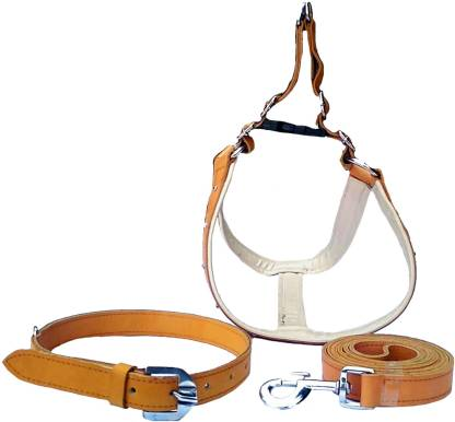 FOREVER99 Dog Harness & Leash