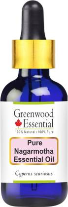 Greenwood Essential Pure Nagarmotha Essential Oil (Cyperus scariosus) with Glass Dropper 100% Natural Therapeutic Grade Steam Distilled