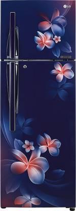 LG 308 L Frost Free Double Door 2 Star Refrigerator