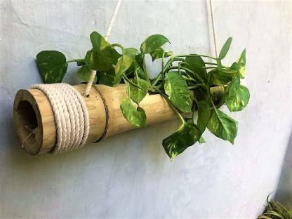 Coirgarden Bamboo Hanging Planters with Adjustable Rope - Bamboo Stand - Bamboo Pot- Plant Container Set