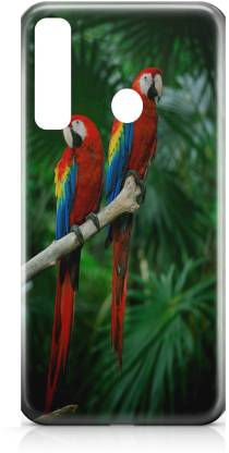 Accezory Back Cover for Vivo Y15, LOVE, PARROT, hard case