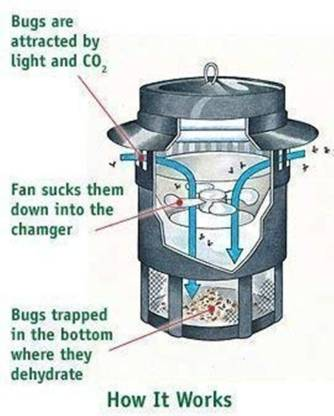 SK Creation Green Mosquito Electric Insect Killer (Lantern) Electric Insect Killer