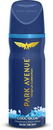 PARK AVENUE Original Collection Cool Blue Fragrance Seize the Day Body Spray  -  For Men