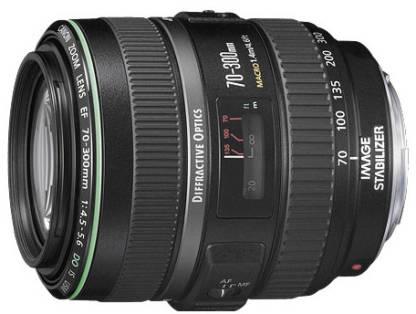 Canon EF 70 - 300 mm f/4.5-5.6 DO IS USM Lens(Black)